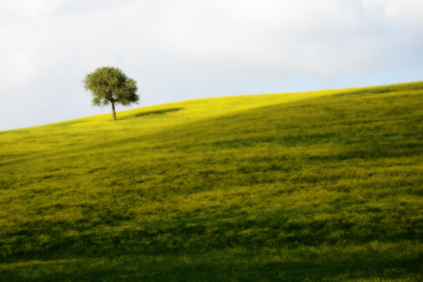 Val d'Orcia: Colline